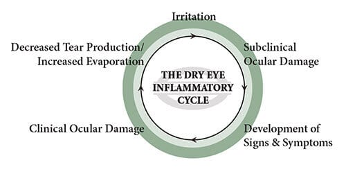 Dry Eyes Cycle